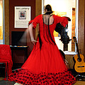 Flamenco Dancer by Gerry Bates