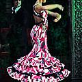 Flamenco Series No. 10 by Mary Machare