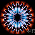 Flames Kaleidoscope 1 by Rose Santuci-Sofranko