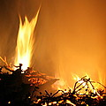 Flames by Lali Kacharava