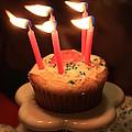Flaming Birthday Cupcake Closeup by Robert D  Brozek