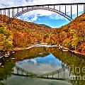 Flaming Fall Foliage At New River Gorge by Adam Jewell