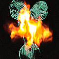 Flaming Personality by Mayhem Mediums