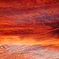 Flaming Sky by Julia  Walsh