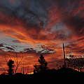 Flaming Sunset by Paulette B Wright
