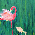 Flamingo And Chick by Maura Satchell