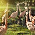 Flamingo Art by Diane Dugas