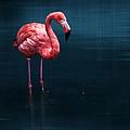 Flamingo - Blue by Hannes Cmarits