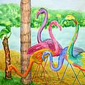 Flamingo Dingos by Rhonda Leonard