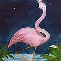 Flamingo Moon Frog Cathy Peek Tropical Bird by Cathy Peek