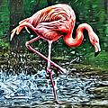 Flamingo Splash Two by Alice Gipson