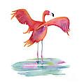 Flamingo Wings by Amy Kirkpatrick
