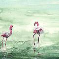 Flamingos In Camargue 02 by Miki De Goodaboom