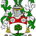 Flannery Coat Of Arms Irish by Heraldry