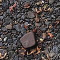 Flat Skipping Stones by William Norton