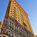 Flatiron Building Profile Too by Randy Aveille