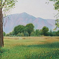 Flatirons From Dry Creek Meadow by Daniel Dayley
