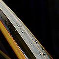 Flax Droplets by Joe Schofield