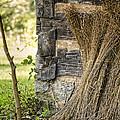 Flax by Heather Applegate
