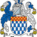 Fleming Coat Of Arms Irish by Heraldry