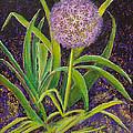 Fleur D Allium With Iris Leaves Backup by Margaret Bobb