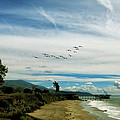 Flight Of Pelicans by John A Royston