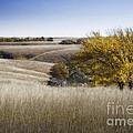 Flint Hills Autumn 013 by Fred Lassmann