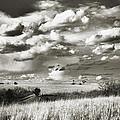 Flint Hills Prairie by Thomas Bomstad