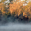 Flint River 14 by Kim Pate