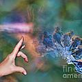 Flip The Bird by Stacey Nagy