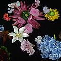 Floating Flowers by Byron Varvarigos