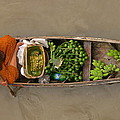 Floating Market by Sarah Parks