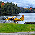 Floatplane In Fall by Les Palenik