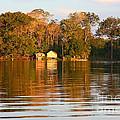 Flooded Amazon With Houses by Nareeta Martin