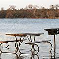Flooded Park Bench Lunch by Ian Mcadie