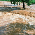 Flooded River by Peter Menzel/science Photo Library