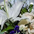 Floral Arrangement  by Susan McMenamin