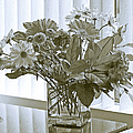 Floral Arrangement With Blinds Reflection by Ben and Raisa Gertsberg