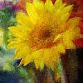 Floral Art Xxxvi by Tina Baxter
