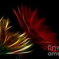 Floral Fantasy by Bianca Nadeau