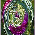 Floral Illusion 1 by Sonali Gangane