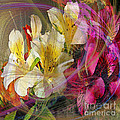 Floral Inspiration - Square Version by John Beck