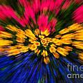 Floral Triple Zoom by Grace Grogan