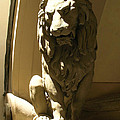 Florence Lion by Maria Huntley