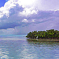 Florida Bay Island Filtered by Duane McCullough