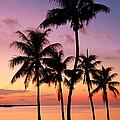 Florida Breeze by Chad Dutson
