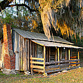 Florida Cracker Cabin by Randi Kuhne