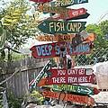 Florida Crossroads by Dodie Ulery
