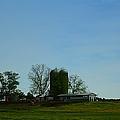 Florida Farmlands by Debra Forand