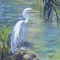Florida Keys Egret by Joyce Spencer